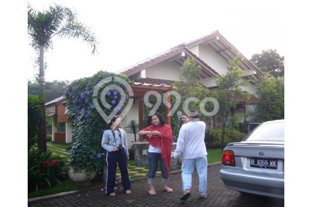 Villa dg KOLAM RENANG PRIBADI (tidak macet hny15 menit dari Ciawi) 3153466