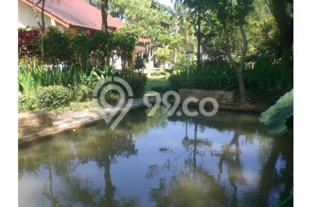 Villa dg KOLAM RENANG PRIBADI (tidak macet hny15 menit dari Ciawi) 3153477