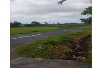 Tanah lingkungan villa di Babakan Canggu