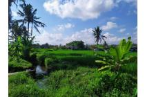 Dijual Tanah Super Murah Di Ubud