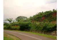 Tanah Kebun Cijapati, Garut