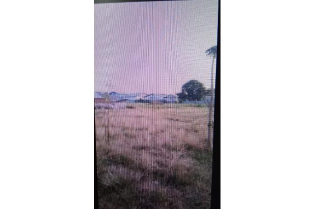 Rp232mily Tanah Dijual