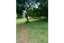 Tanah 1 hektar / 1 hA dijual di Tapos Depok, Dekat Jatijajar Estate