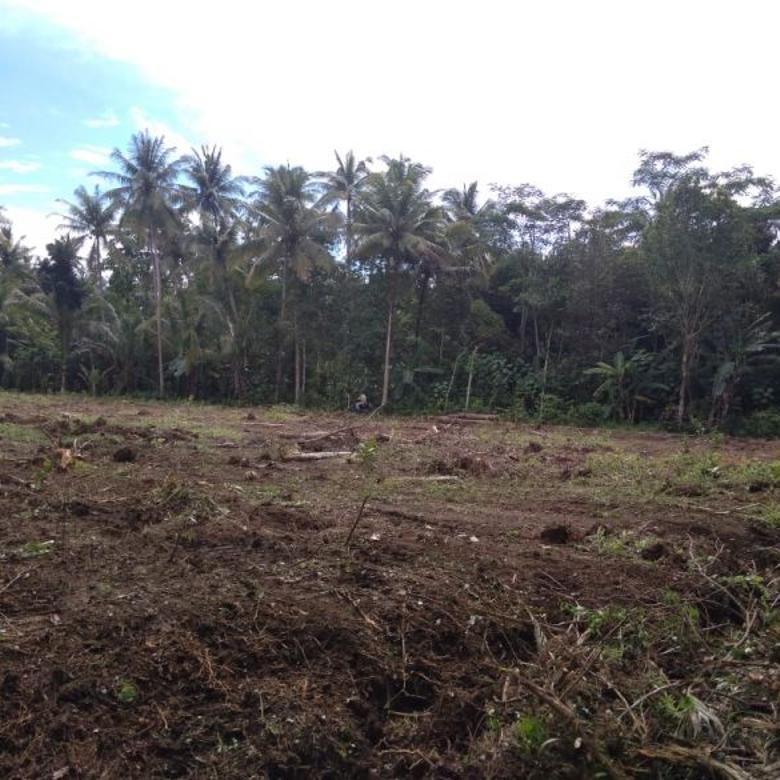 Mudah Punya Aset Tanah, Beli Sekarang Harga Murah Dekat Wates