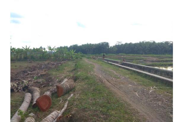 Tanah Dekat NYIA: 12 X Angsur Bebas Bunga; Wates Jogja 17150390
