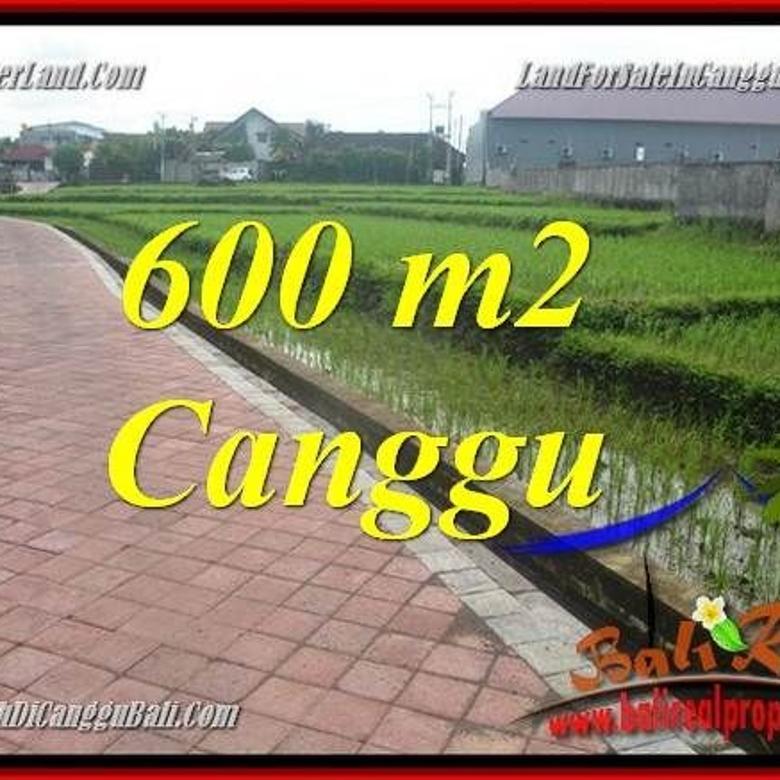 600 m2 View sawah lingkungan villa hanya 5,3 jt/m di Canggu
