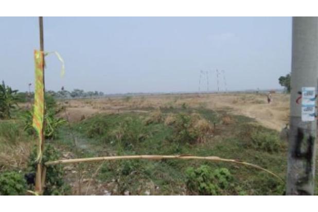 Rp165mily Tanah Dijual