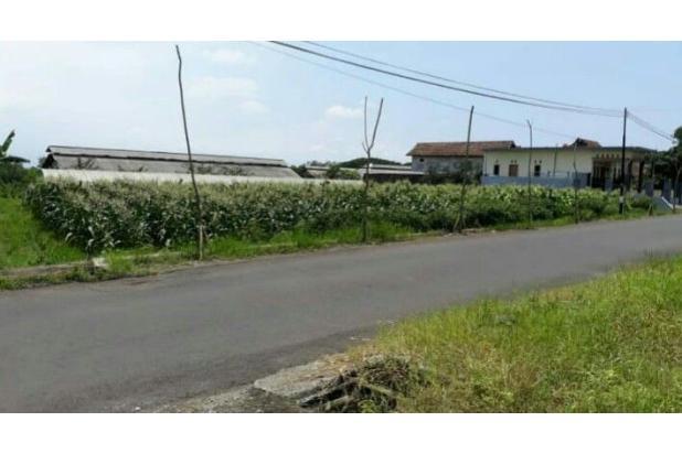 Rp6,01mily Tanah Dijual