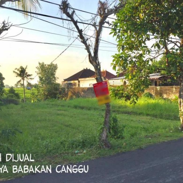 Dijual Tanah Kavling Bagus & Strategis di Canggu, Badung, Bali
