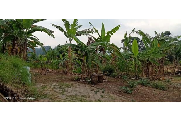 Rp6,52mily Tanah Dijual