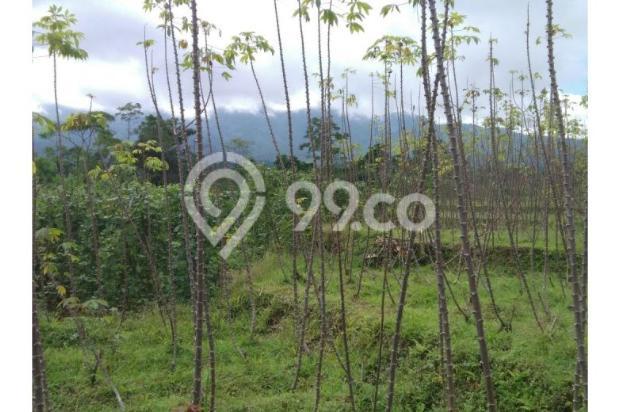 Tanah bogor lokasi strategis dekat kecamatan tenjolaya luas 2800 Meter 9586636