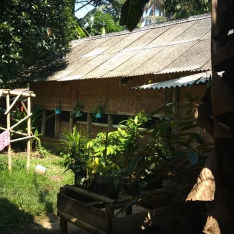 Rumah Asri Rumpin Bogor