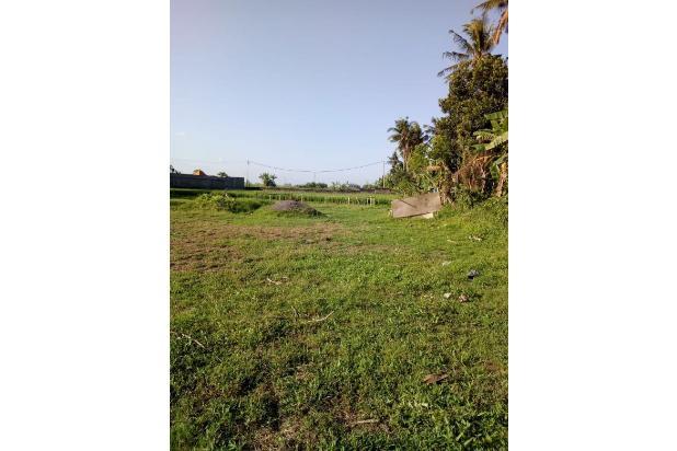 Rp3,41mily Tanah Dijual