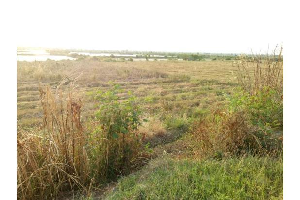 Rp7,36mily Tanah Dijual