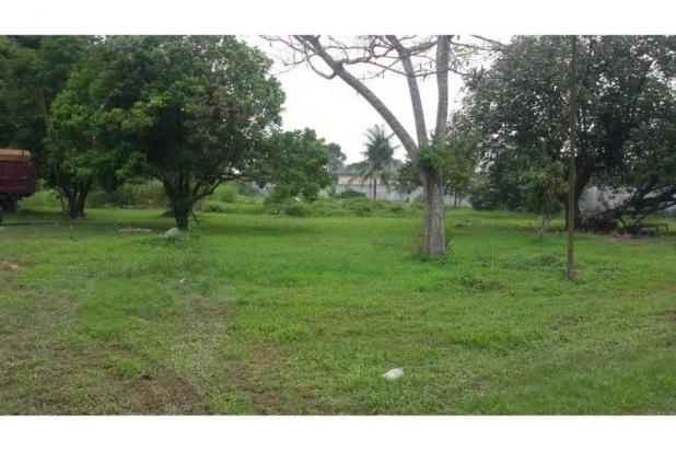Disewa Tanah di Sunggal Simpang PDAM Tirtanadi 6485335