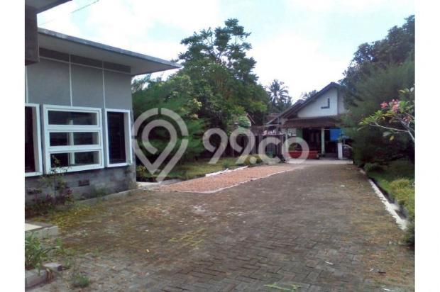 Jual BU Harga dibawah Pasar,, LT 929 m2 + 3 Unit Rumah dekat Kampus UGM,UII 12298990