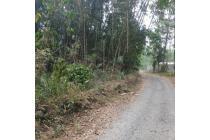 Tanah Pekarangan 2500 meter di jalan kaliurang dekat kampus UI