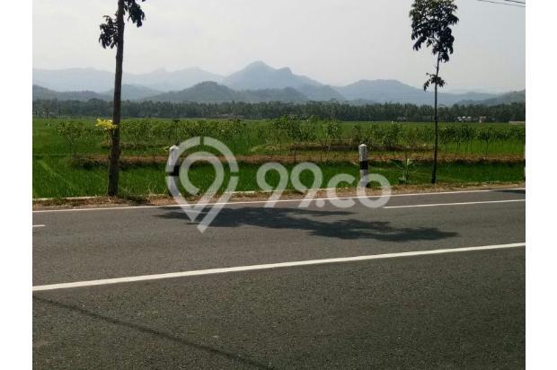 Tanah SHMP di Tanggalan, Kulon Progo 18274397