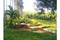 Dijual Tanah SHM termasuk Villa dan Kolam Ikan di Babakan, Ciseeng - Bogor