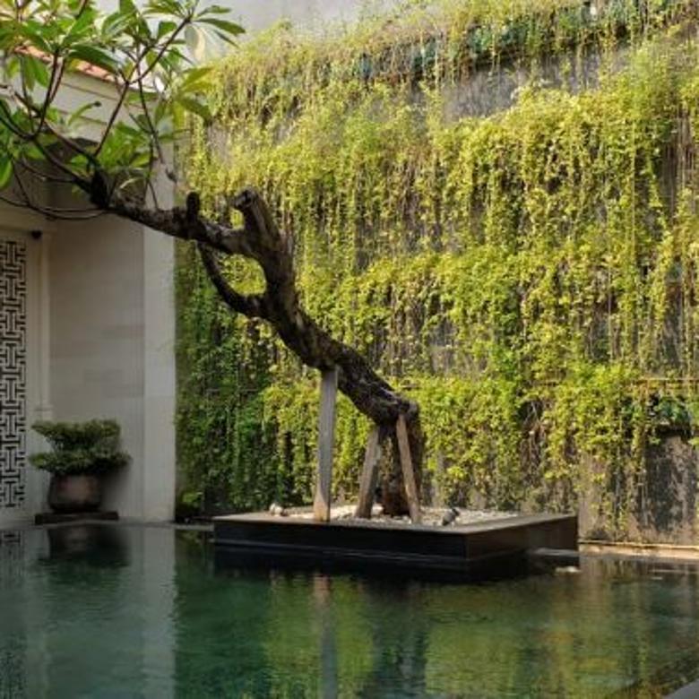 Disewakan Rumah di Kemang, Jakarta Selatan ~ Swimming Pool
