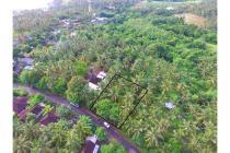 Dijual tanah 10 are di Bali dekat pantai