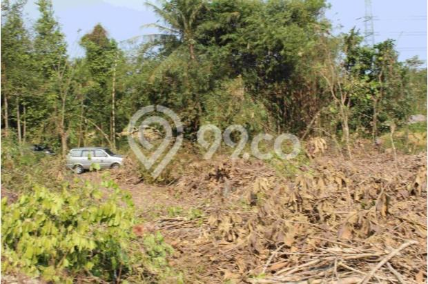 Mari Pilih Tanah Kaveling Konsep Cluster di Bantul Kota: Tersedia 14 Unit 12960479
