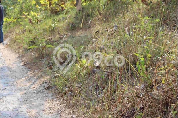 Mari Pilih Tanah Kaveling Konsep Cluster di Bantul Kota: Tersedia 14 Unit 12960494