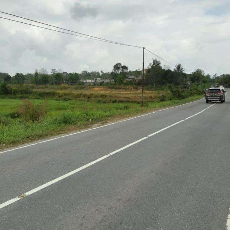 Tanah-Kutai Kartanegara-2
