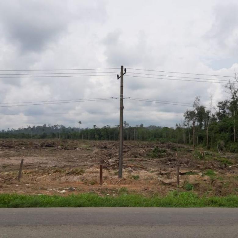 tanah km 36 samboja poros jalan lebar 350 m kutai kartanegara