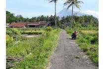 Tanah 700 meter di jalan palagan km 13 sleman yogyakarta