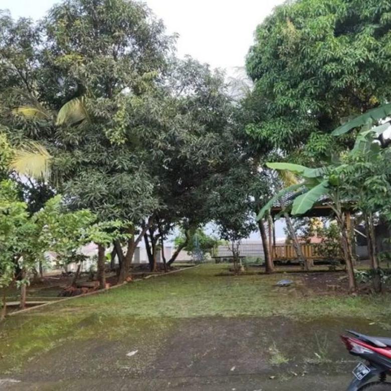 Tanah Luas Strategis Kelapa Dua Depok Bonus  Rumah Pohon