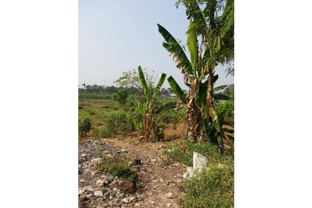 Rp85,1mily Tanah Dijual