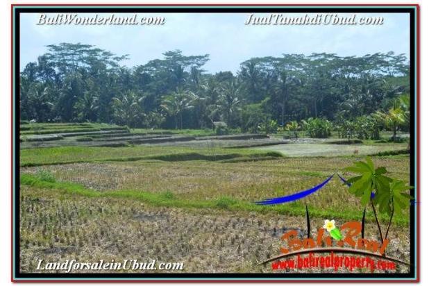 TANAH di UBUD JUAL MURAH 6,200 m2 View Sawah dan Gunung Batur 19101742