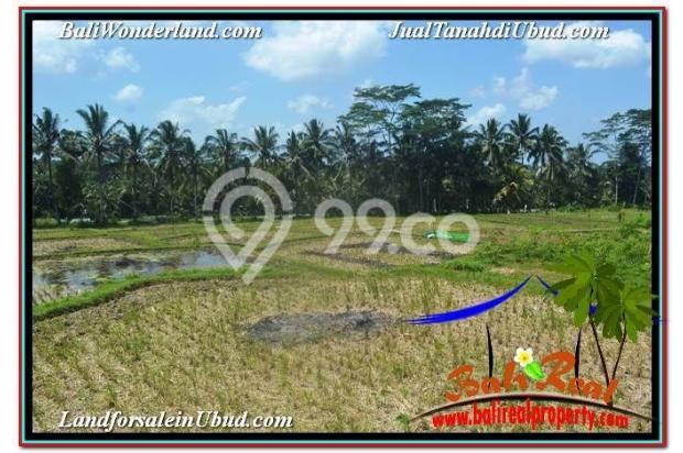 TANAH di UBUD JUAL MURAH 6,200 m2 View Sawah dan Gunung Batur 19101745