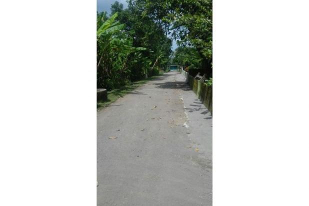 Tanah Dijual Murah, Dijual Tanah Pekarangan Cocok Bangun Rumah Sleman 9839476