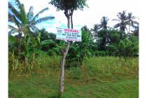 Dijual Tanah Kavling Dibelakang Perum Griya Family Klatak Banyuwangi