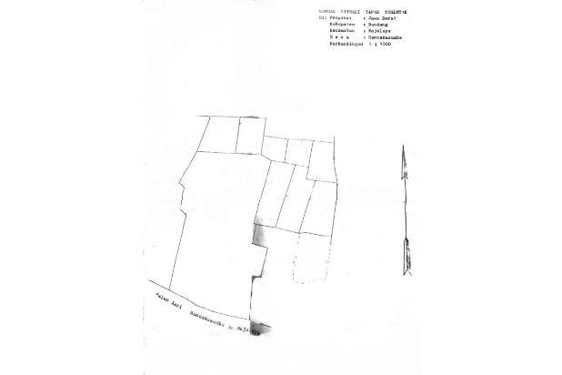 Rp16,1mily Tanah Dijual