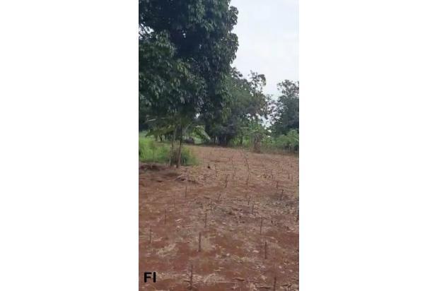 Rp50,4mily Tanah Dijual