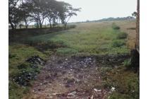 Tanah-Indramayu-9