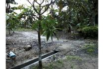Tanah Dijual Di Pasir Panjang/Pinang Merah