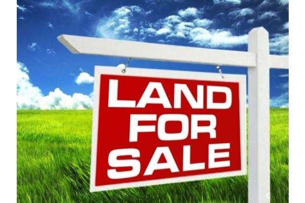 Rp47mily Tanah Dijual