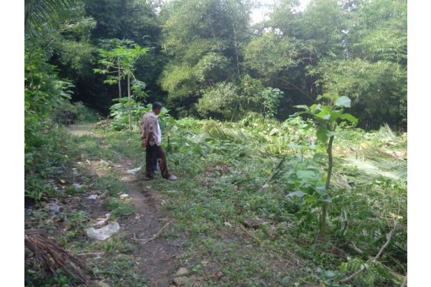 Beli Tanah Kaveling Pastikan Ada Sertifikatnya, Hindari Beli Girik dan AJB 13243713