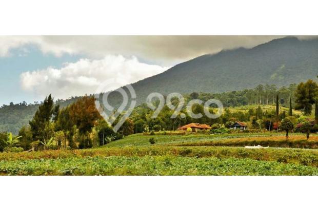 Green Montana Village, 30 Menit ke Kawasan Wisata Puncak Cipanas 15829480