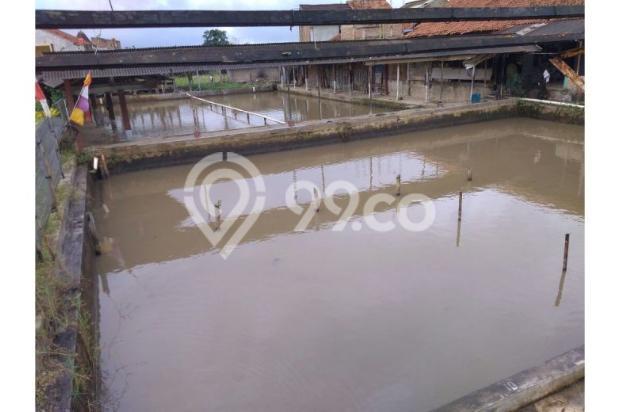 Dijual Cepat Kolam Pemancingan di Cimahi, dekat Tempat Rekreasi 10600335