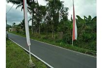 Tanah Dijual Di Desa Kebumen, Lokasi Strategis, Harga Murah