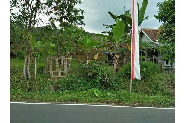 Tanah Dijual Di Desa Kebumen, Lokasi Strategis, Harga Murah 15263010