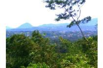 Tanah-Bogor-23