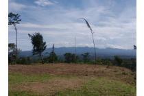 Tanah-Bogor-10
