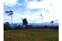 Tanah-Bogor-16