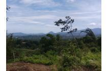 Tanah-Bogor-12